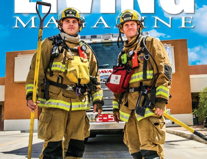 Early Summer 2015 Issue
