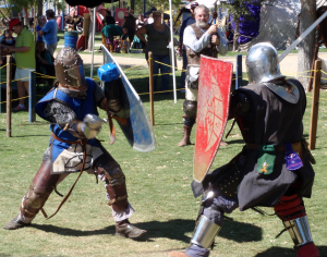 Demonstrations in Medieval fighting techniques will be on display.