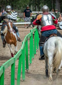 Hailing all the way from Spokane, Washington, the Epona Equestrian Team will entertain and amaze all in attendance. After all, what kind of renaissance Faire would it be without a Joust?